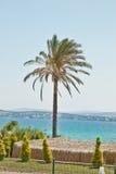 Beautiful Summer in Turkey. Beautiful Summer in  Çeşme Beach ,Turkey Stock Photography