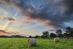 Beautiful Summer vibrant sunset over countryside landscape of fi Stock Image