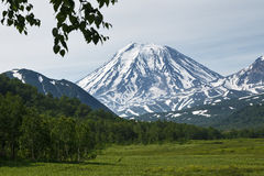 Beautiful summer view of Koriaksky Volcano - active volcano of K Stock Images