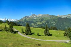 Beautiful summer view of mountain. Outdoor natural scene in Swis Royalty Free Stock Image