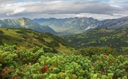 Beautiful summer view of Viluchinsky pass Stock Photo