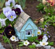 Cute fairy house with summer flowers of viola and daisy Royalty Free Stock Image