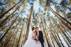 Beautiful summer Wedding walk on nature Royalty Free Stock Photography