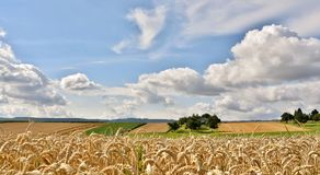 Beautiful Summers Day. Landscape with fields and blue sky on a summers day Stock Photos