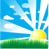 Beautiful sun day / Vector illustration Royalty Free Stock Photography