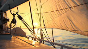 Beautiful sun-filled sails at dawn Stock Photo