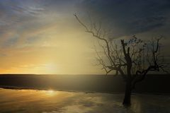 Beautiful sun set, Royalty Free Stock Images