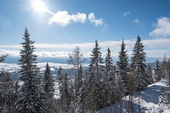 Beautiful sun shining over valley covered in snow Royalty Free Stock Photography
