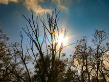 Big Bright Sun royalty free stock photography