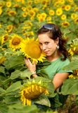 BEAUTIFUL SUNFLOWER GIRL. In the sun Stock Image
