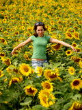 BEAUTIFUL SUNFLOWER GIRL. In the sun Stock Photos