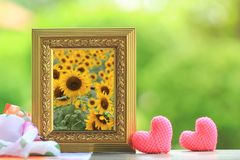 Beautiful Sunflowers blooming in Golden frame with heart on the table stock image
