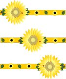 Beautiful sunflowers brightening the day... Royalty Free Stock Images