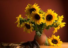 Beautiful Sunflowers in ceramic  jar Stock Image