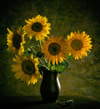 Beautiful sunflowers in vase Royalty Free Stock Images