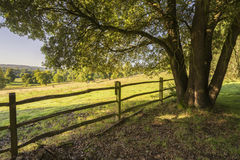 Beautiful sunlight English countryside landscape in Autumn Stock Photo