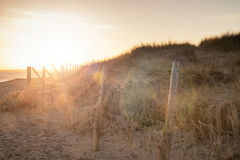 Beautiful sunlight landscape with added lens flare effect filter Stock Photos