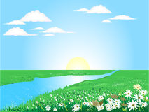 Beautiful sunny day. On the green meadow with river Royalty Free Stock Photo
