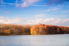 Beautiful sunny day in autumn park Royalty Free Stock Images