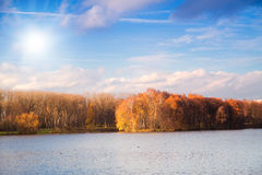 Beautiful sunny day in autumn park Stock Images