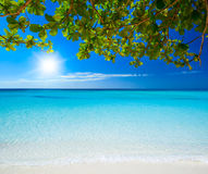 Beautiful sunny day on the beach. Royalty Free Stock Image