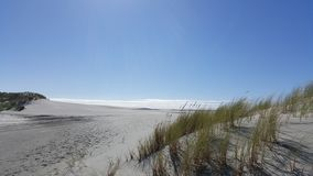 Beautiful sunny day in white sandy beach of Farewell Spit of New Zealand royalty free stock images