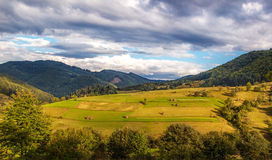 Beautiful sunny day is in mountain landscape. Carpathian, Ukrain. E Stock Images