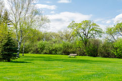 Beautiful sunny day in park at spring time Royalty Free Stock Image