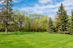 Beautiful sunny day in park at spring time. Blue cloudy sky, green lawn, leafy trees Stock Images