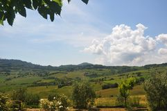Large Italian fields with vegetation. Beautiful sunny day with puffy clouds over large Italian fields with vegetation stock photo