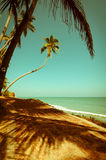 Beautiful sunny day at tropical beach Royalty Free Stock Photos