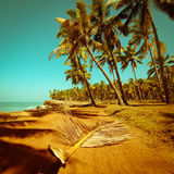 Beautiful sunny day at tropical beach Royalty Free Stock Photo