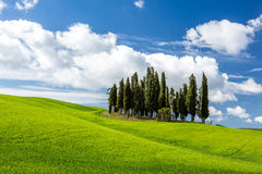 Beautiful sunny day in Tuscany Royalty Free Stock Photography