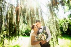 Beautiful sunny day. Wedding couple posing on the background of nature stock photo