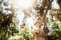 Beautiful sunny day. Wedding couple posing on the background of nature royalty free stock photos