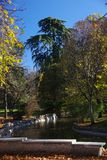 Winter park Retiro, Madrid, Spain Stock Images