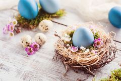 Beautiful, sunny easter greeting card - with blue colored eggs, natural nest Stock Photography