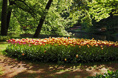 Beautiful sunny morning at the Keukenhof Gardens Royalty Free Stock Image