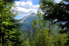 Beautiful  sunny mountain scenery in the holiday the day Royalty Free Stock Photos