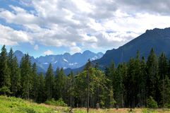 Beautiful  sunny mountain scenery in the holiday the day Stock Photography