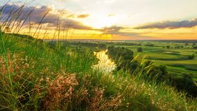 Beautiful sunny sunset or sunrise countryside landscape. Clouds of small insects flying over green wild meadow grass