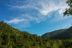 Beautiful sunny valley in the mountains in summer. A beautiful sunny valley in the mountains in summer Stock Photo