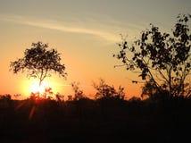 Beautiful sunrise in Aukstumalos swamp, Lithuania stock photo