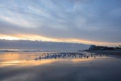 Beautiful sunrise at the beach. Royalty Free Stock Photo