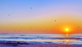 Beautiful sunrise on Black Sea beach Stock Photo