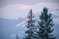 Beautiful sunrise in Carpathian mountains Royalty Free Stock Photography