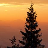 Beautiful sunrise in Carpathian mountains Stock Photography