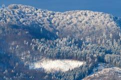 Beautiful sunrise in Carpathian mountains Stock Image