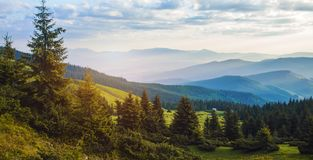 Beautiful sunrise in the Carpathian mountains Stock Photography