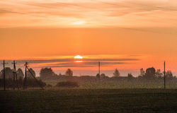 Beautiful sunrise on the field  in village. Beautiful sunrise on the field. isolated on natural Royalty Free Stock Images